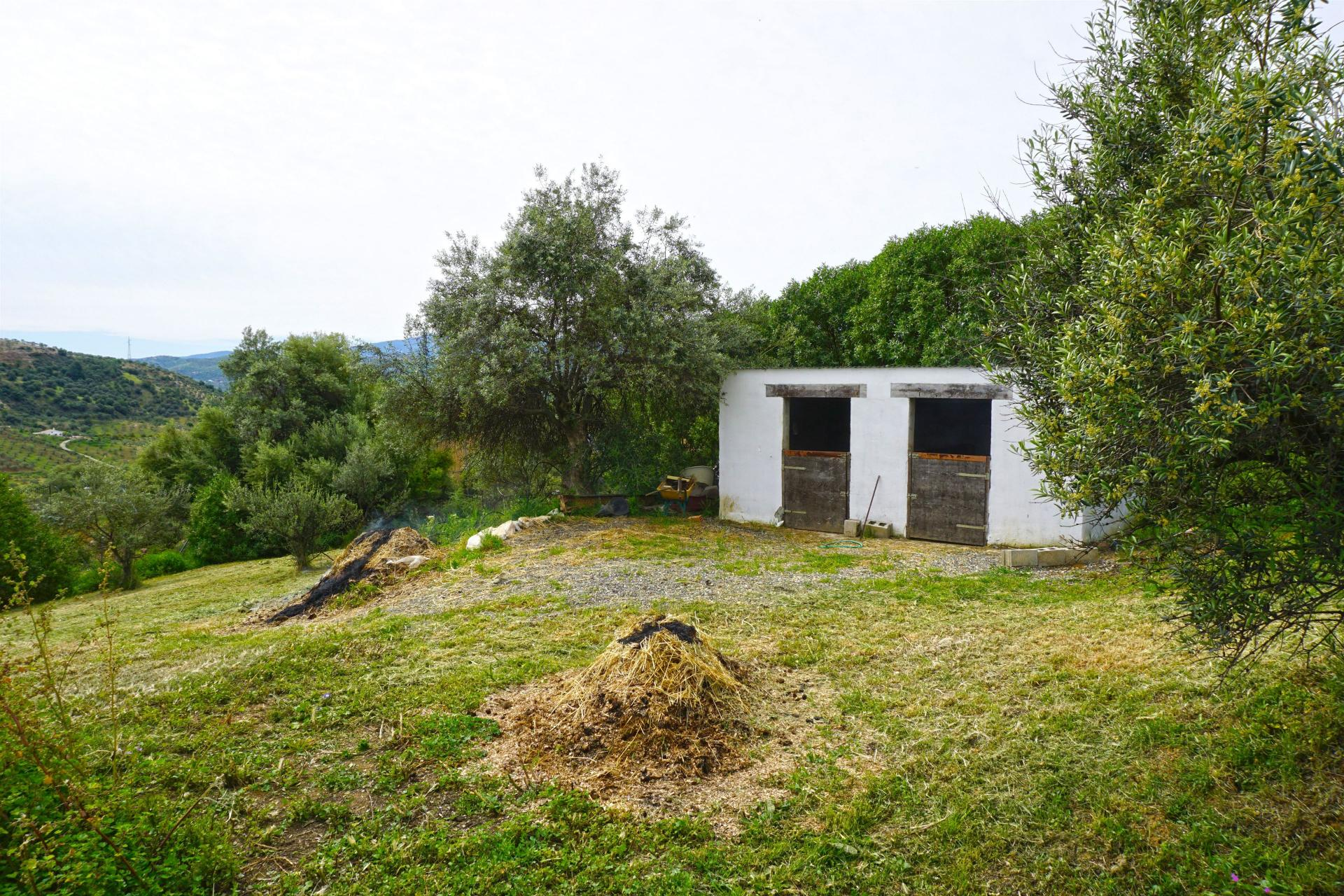 F3173011: country house for sale in Tolox